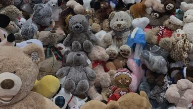 Photo of Top 33  Facts about Teddy Bear That You Probably Never Knew!