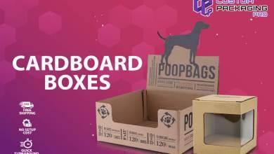 Photo of Things Often Missed Regarding Wholesale Cardboard Boxes