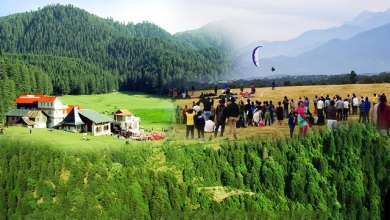 Photo of Manali Or Dalhousie: Which One To Choose For Your Winter Trip?