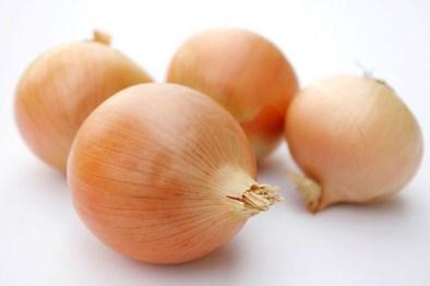 Cebolla - Recetas de cocina RECETASonline