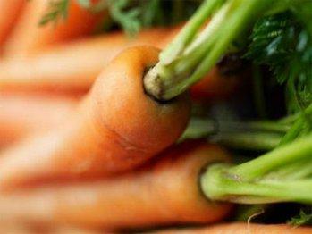 zanahoria - Alimentos saludables - Recetas de cocina RECETASonline