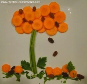 carottes legume
