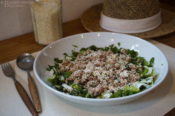 Assiette de Salade épicée aux herbes et de porc haché Laab Moo - Recette de Cuisine thaï ©