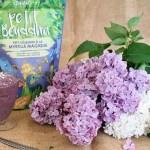 Crème glacée végétale à la myrtille, fraise des bois et Petit Bouddha d'Iswari © Balico and co
