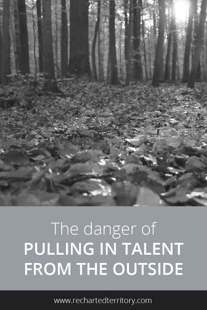 The danger of pulling in talent from the outside