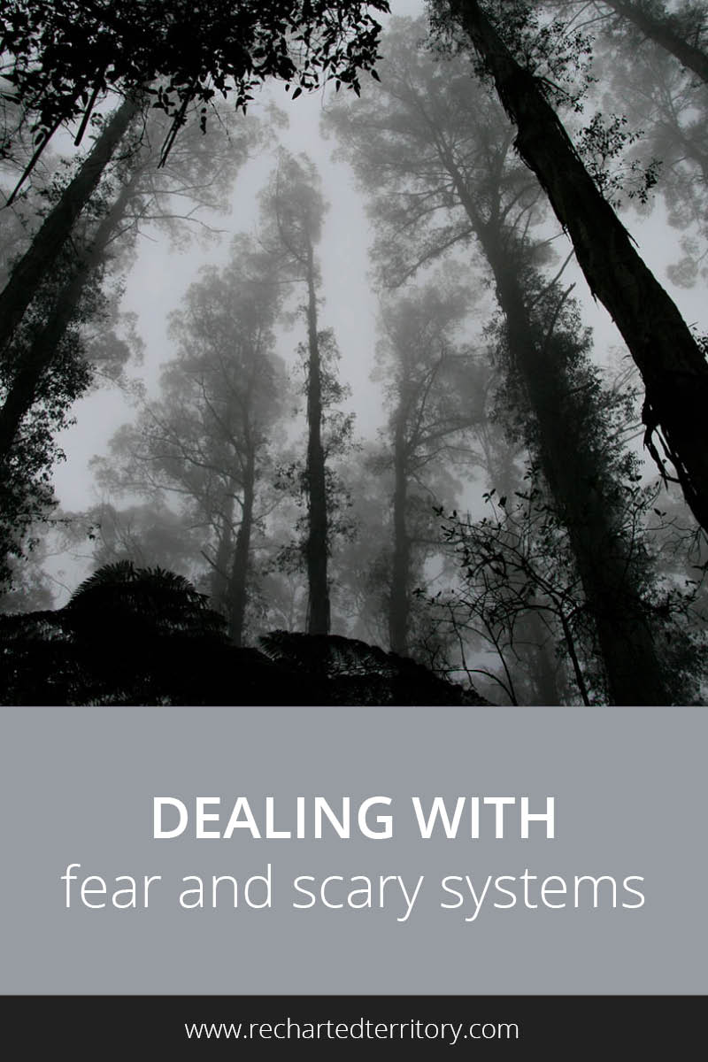 Dealing with fear and scary systems