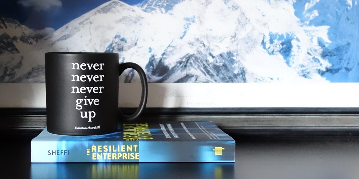 Building resilient enterprises