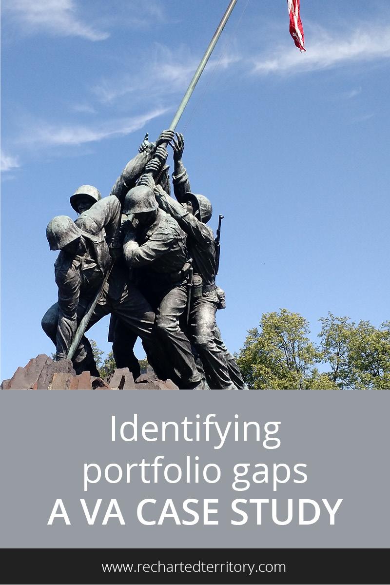 Identifying portfolio gaps: A VA case study