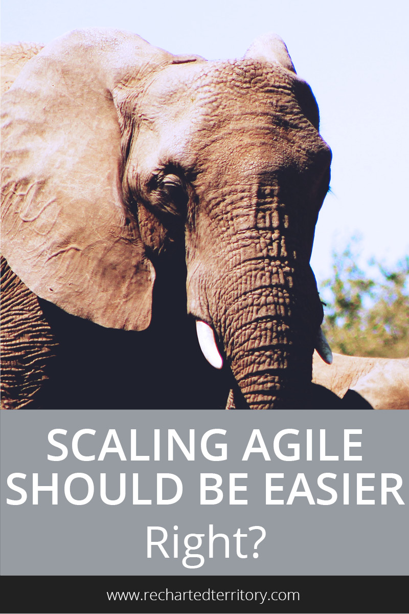 Scaling agile should be easier