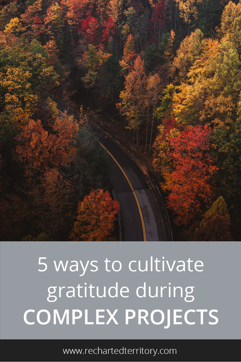 5 ways to cultivate gratitude during complex projects