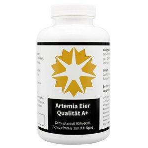 Ouefs d' Artémia en A+ qualité – algova (500 g)