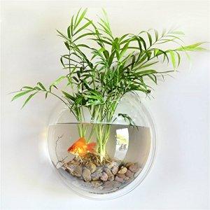Fish Tank Acrylique Bol de poisson Montage mural Vase Poisson Bubble Aquarium