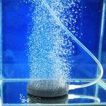 Corneliaa 40mm Pond Pump Hydroponique Air Stone Bubble Disk Aérateur Aquarium Fish Tank Utile Fish Tank Accessoires Pompe À Air Plaque D'oxygène