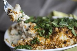 Tangy Creamy Mac and Cheese for two- with labneh and amber ale