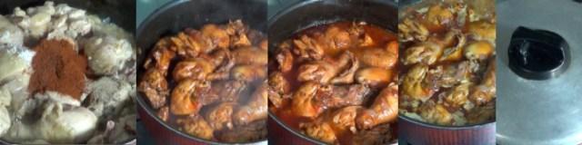 chicken paprikash 2