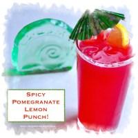spicy pomegranate lemon punch