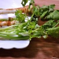 coriander / cilantro