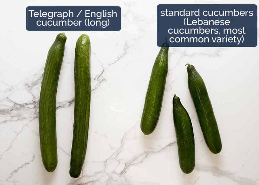 Difference between Telegraph / English cucumbers (long cucumbers) and Lebanese cucumbers, the most common variety
