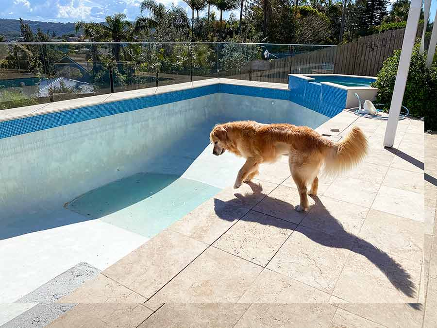 Dozer and empty pool