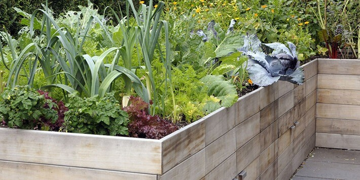 3-Step Guide to Building a Raised Garden Bed