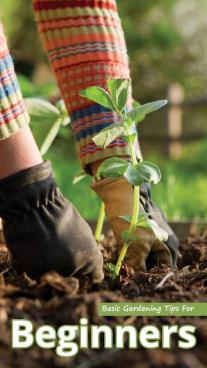 Basic Gardening Tips For Beginners