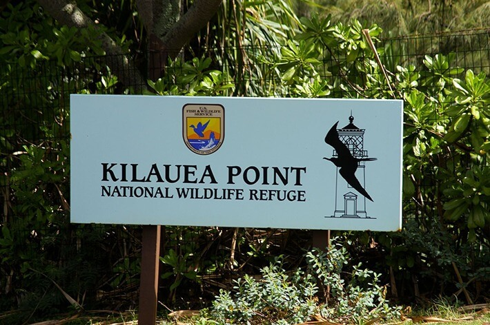 Kilauea Point National Wildlife Refuge, Kauai