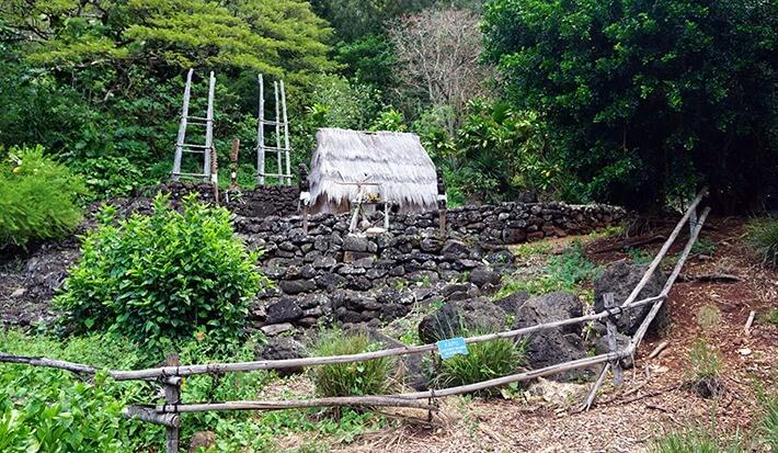 Waimea Arboretum and Botanical Garden, Oahu