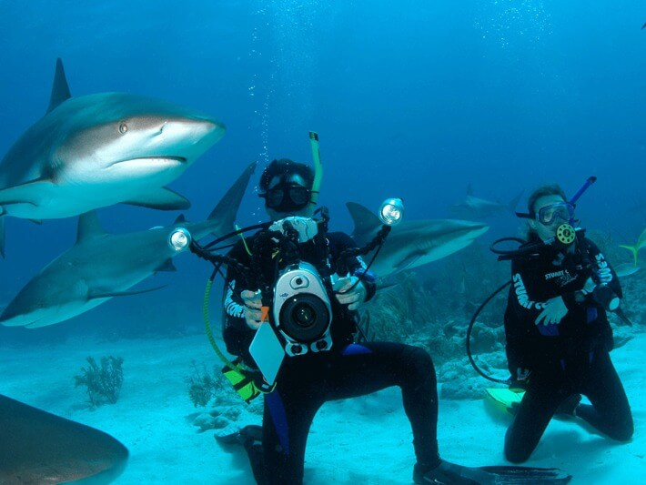 Things To Do In Bahamas