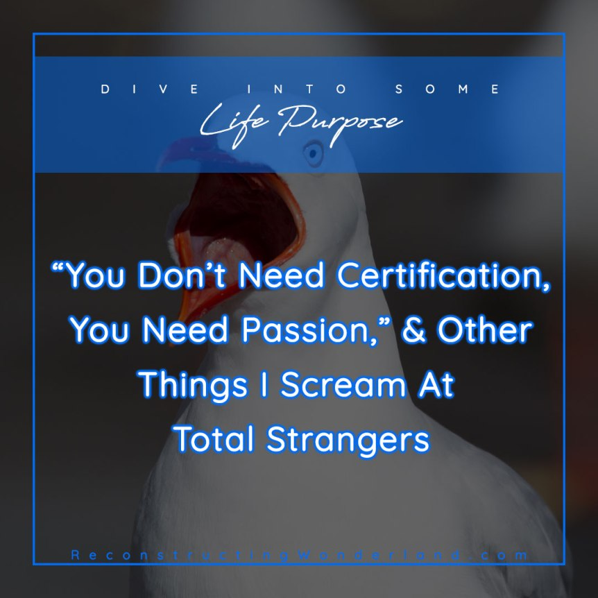 you don't need certification, you need passion, and other things I scream at total strangers