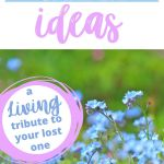 Memorial Garden Ideas A Living Tribute To Your Lost One Recover From Grief
