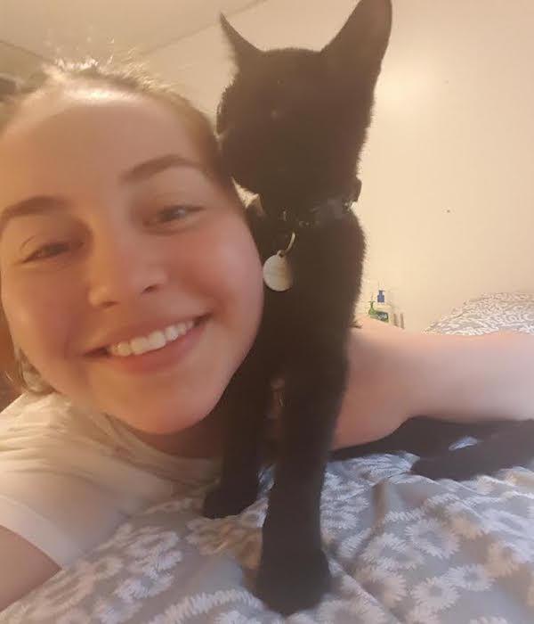 Rachel-cat