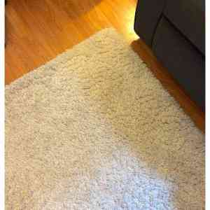 a white shag area rug