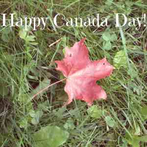 red maple leaf for Canada Day