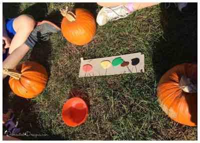 paints_for_pumpkin_painting