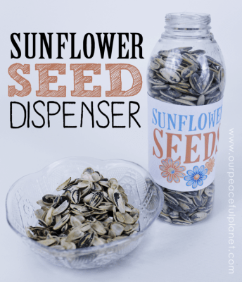DIY-Human-Sunflower-Seed-Dispenser-3-1