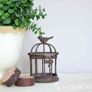 little iron bird cage with some wood slices