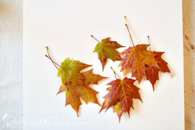 leaves pressed in wax