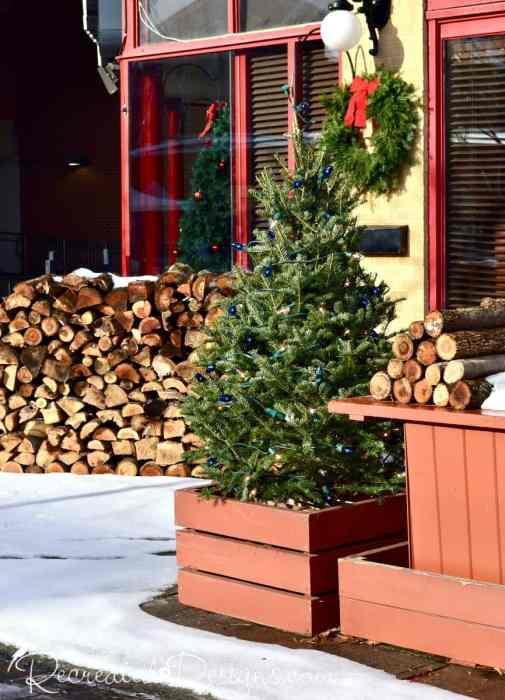 Christmas trees and stacked wood Byward Market Ottawa, Ontario, Canada
