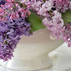 Spring Lilacs in an vintage Ironstone tureen