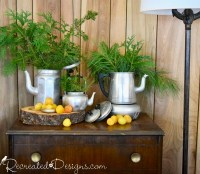vintage coffee pots with evergreens