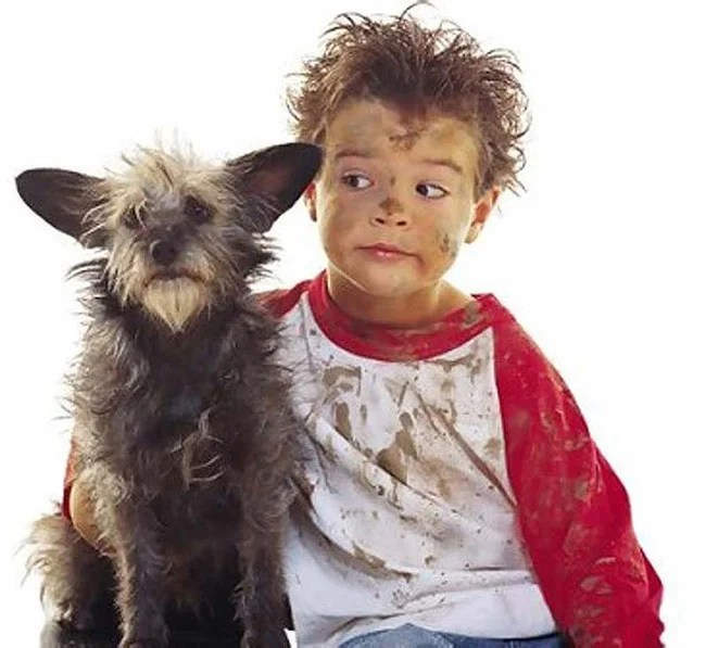 perro y niño sucios
