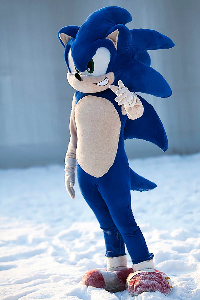 Shadow Hedgehog Dark Costume