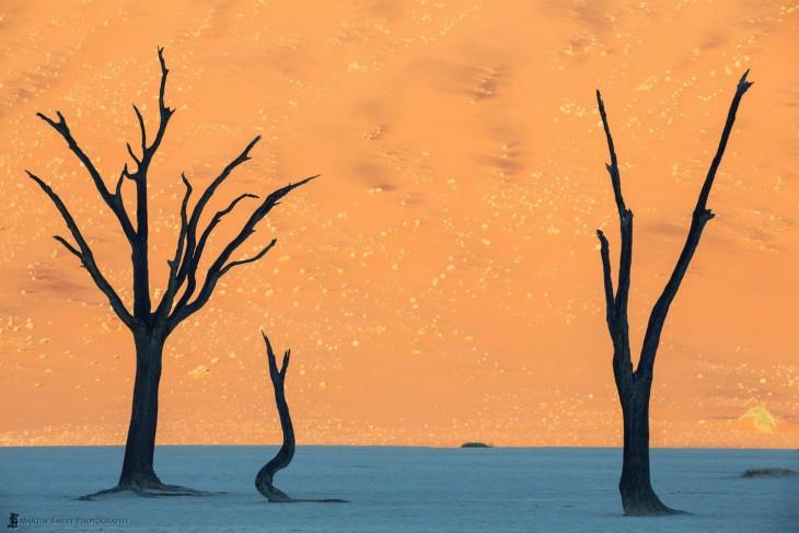 Fotografía de San Dunes en Namibia