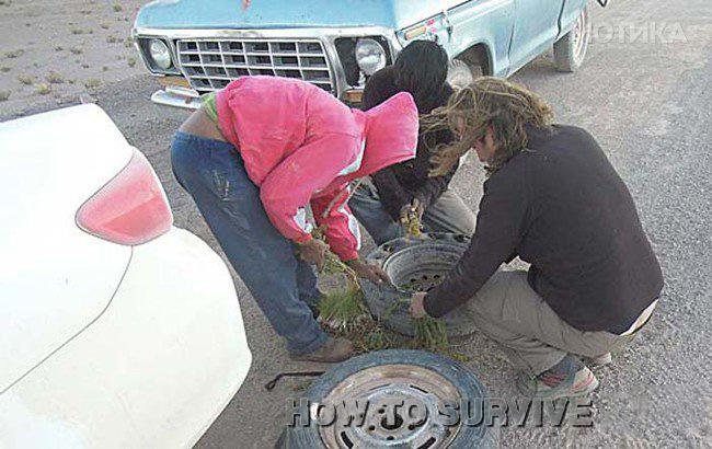 pessoas enchendo um pneu com grama