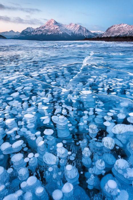 burbujas de metano