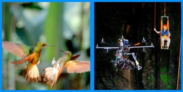 detrás de cámaras de la jala de 2 colibríes