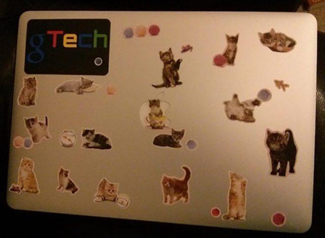laptop con estampitas de gatos