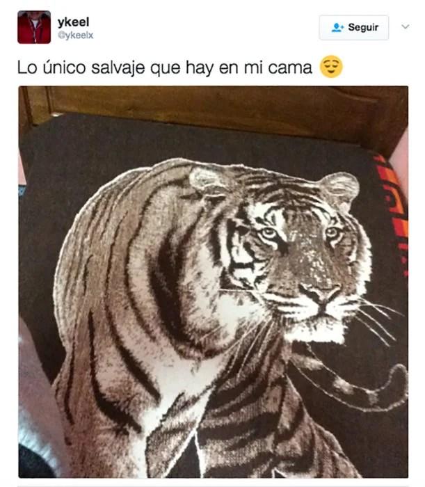 cobertor de tigre