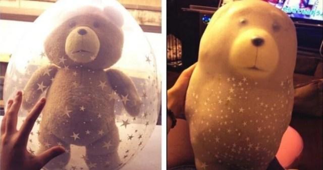 expectativa y realidad de oso