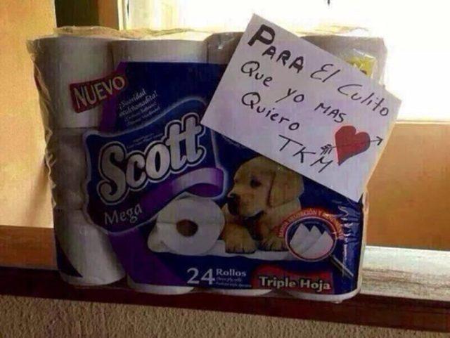 papel higiénico cual regalo de san valentín